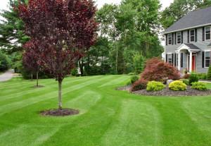 Residential Landscaping Spokane WA